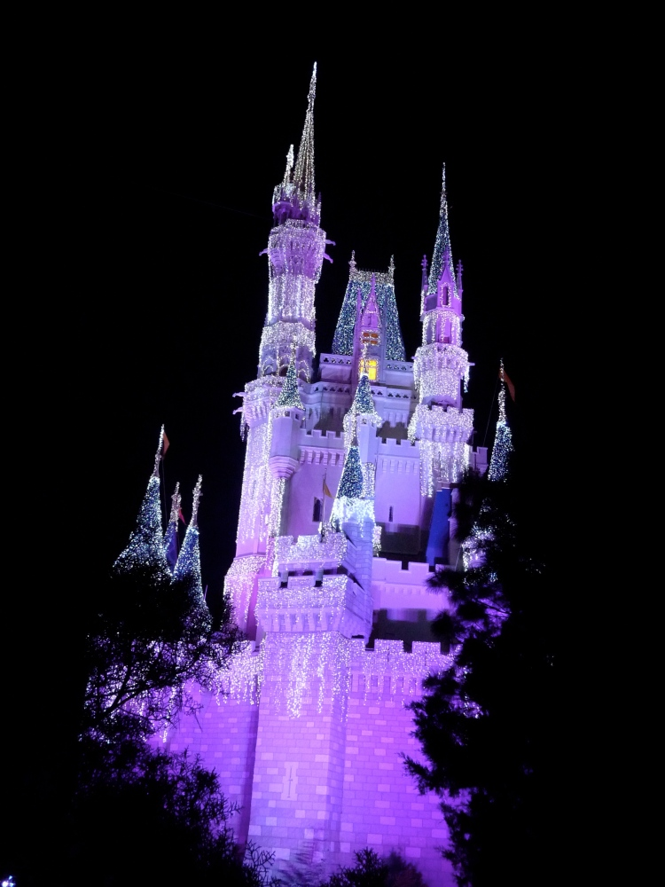 Cinderella castle is lit up pink.